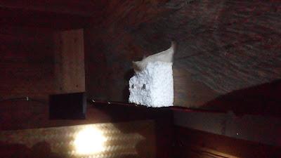 Kumpulan Foto Sarang Walet Diatas Busa / Gabus / Styrofoam