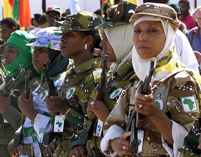 Gaddafis Harem Book