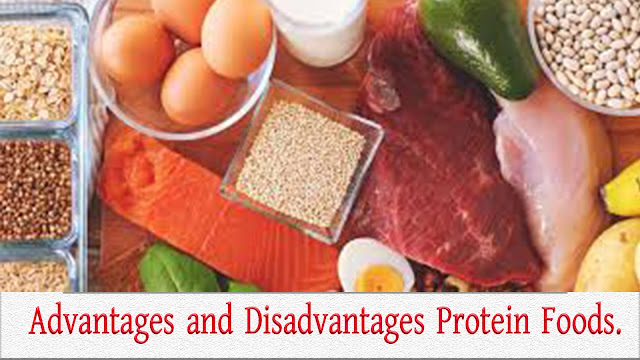 What are the advantages and disadvantages of protein-rich foods.