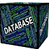 What is Database Management System Types and uses of DBMS