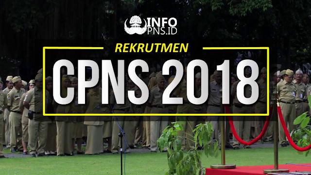 Tes CPNS 2018 Sebentar Lagi Dimulai, Catat Tanggalnya dan Siapkan Syaratnya