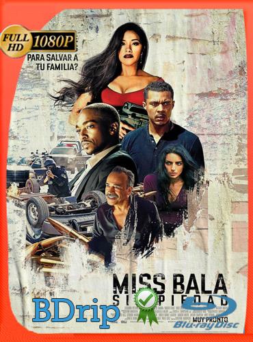 Miss Bala: sin piedad (2019) BDRIP 1080p Latino Dual [GoogleDrive] TeslavoHD
