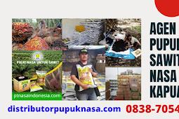 Agen Pupuk Sawit Nasa Kapuas