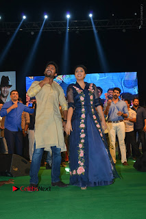 Nenu Local Audio Launch Stills   (Set 1)