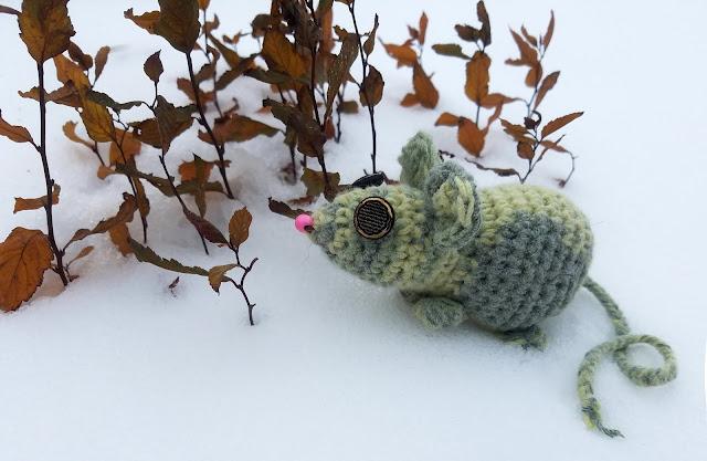странная мышка необычного цвета и с необычными глазами