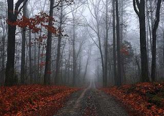 margarita rivas - la niebla