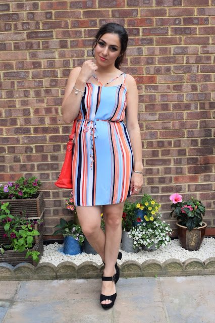 What Cat Wore | Summer Stripes