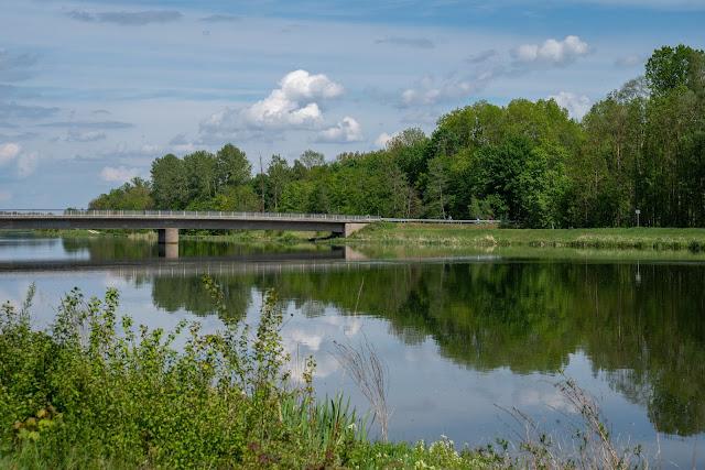 Premiumwanderweg DonAUwald  Etappe 4 von Dillingen nach Höchstädt 16