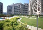 Apartments for sale in DLF Aralias Gurgaon