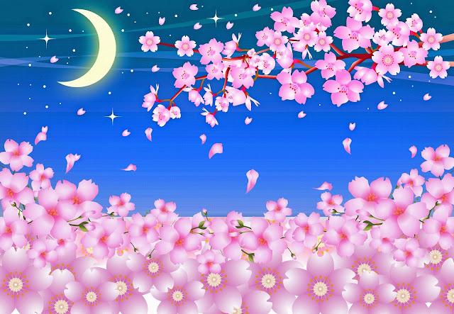 Gambar bunga sakura kartun