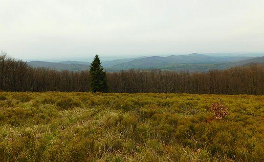 Widok na Solinkę i pasmo granicznej z Hyrlatej.