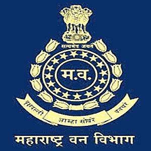 MahaForest Yavatmal Bharti 2021