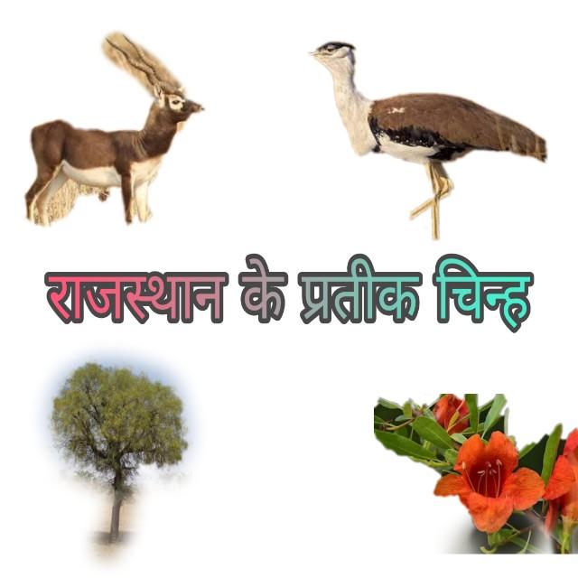 Rajasthan Ke Partik Chinh PDF