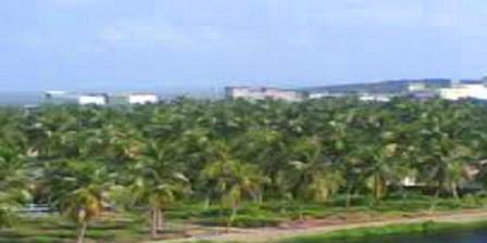 Agrowisata Indragiri Hilir