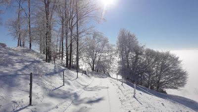 Prächtiger Wintertag