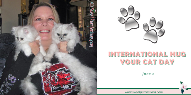 woman holding two silver shaded Persian Cats