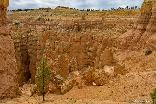 Bryce Canyon, descenso hacia 'Manhattan' - Utah, por el Guisante Verde Project