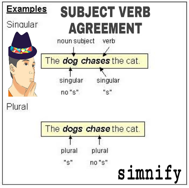 Subject verb agreement explained with questions and answers