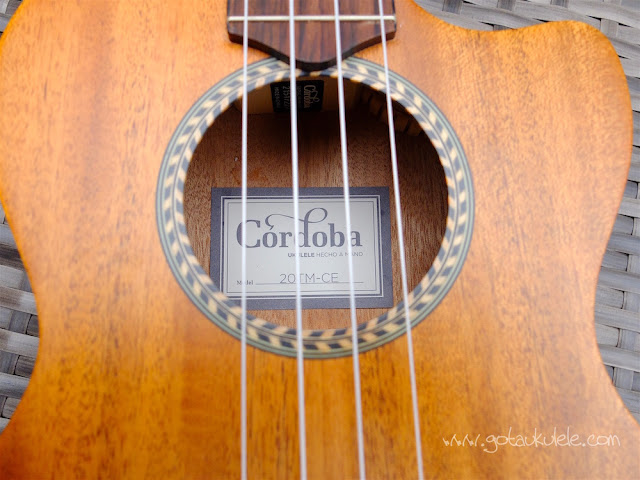 Cordoba 20TM-CE Tenor Ukulele label