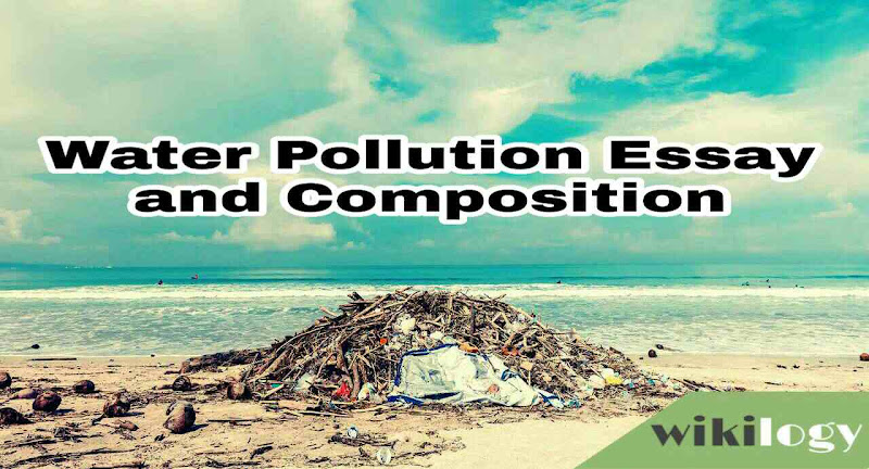Water Pollution Essay Composition
