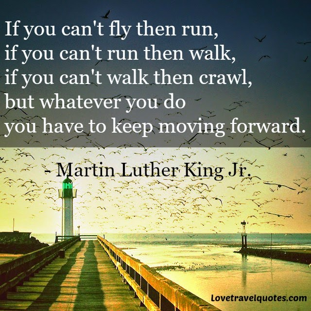 If You Cant Fly Then Run If You Cant Run Then Walk If You Cant