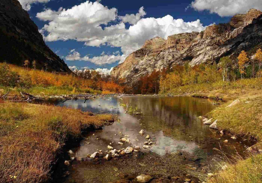 Beaver Pond Trail -- Fall