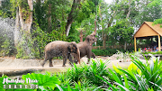 Singapore: Exploring Wilds and Nature