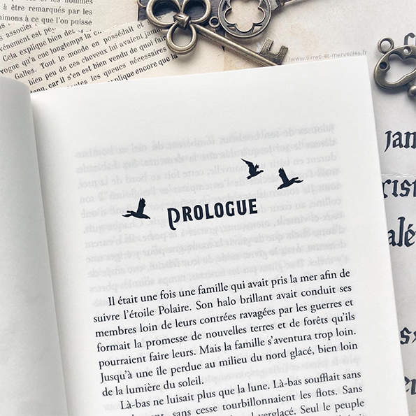 Roman jeunesse : La 13ème maison des Bradley