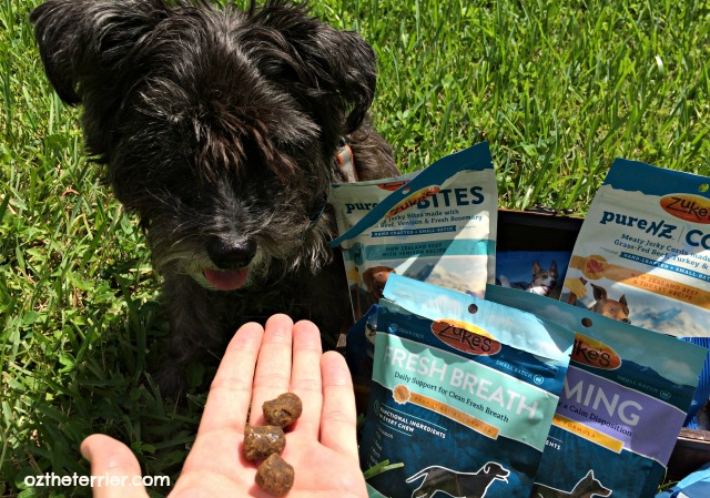 oz tries zuke's functional treats for fresh breath