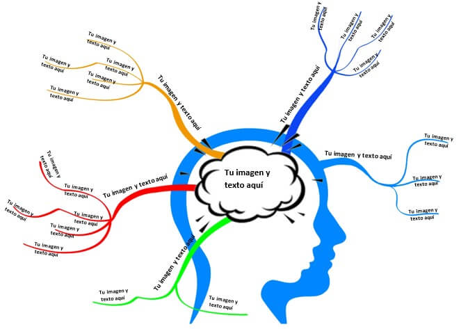 Plantilla mapa mental con líneas orgánicas