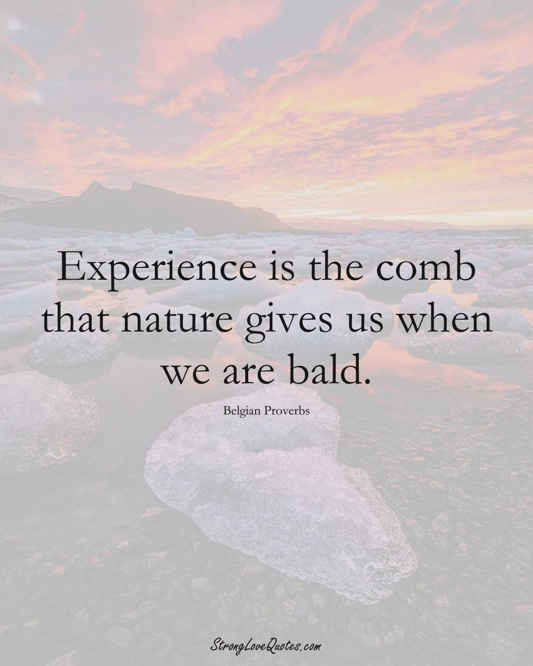 Experience is the comb that nature gives us when we are bald. (Belgian Sayings);  #EuropeanSayings