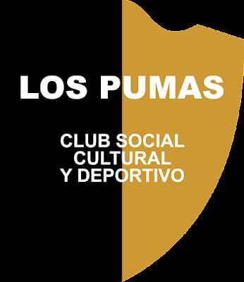 CLUB SOCIAL CULTURAL Y DEPORTIVO LOS PUMAS (VILLA MERCEDES)