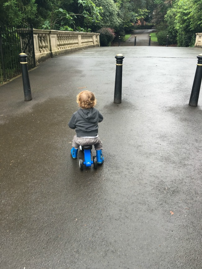 toddler-riding-bike-at-roath-park