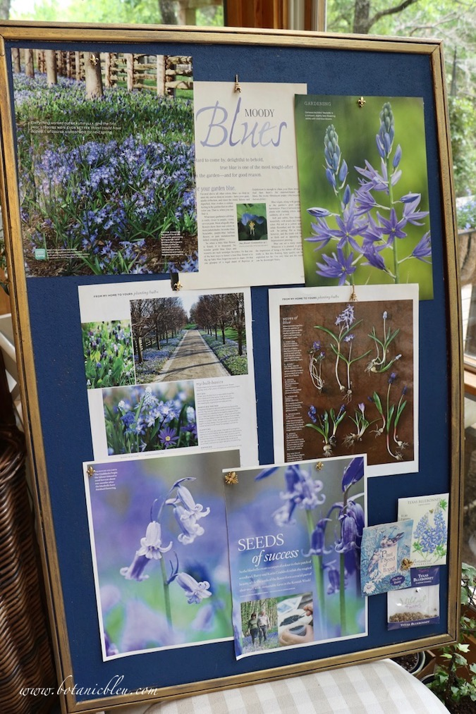 Bulletin Board Inspiration No. 2 with Moody Blue Flowers