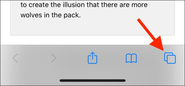 اضغط على زر علامات التبويب في Safari