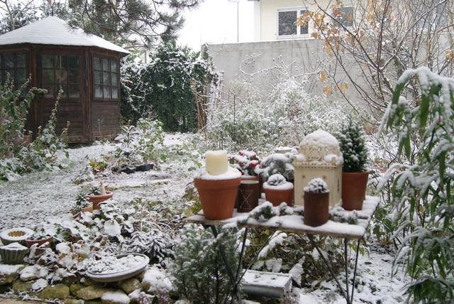 Garten im Dezember mit Schnee