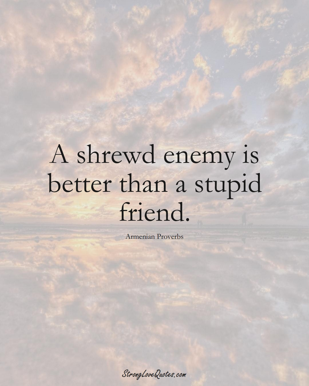 A shrewd enemy is better than a stupid friend. (Armenian Sayings);  #AsianSayings