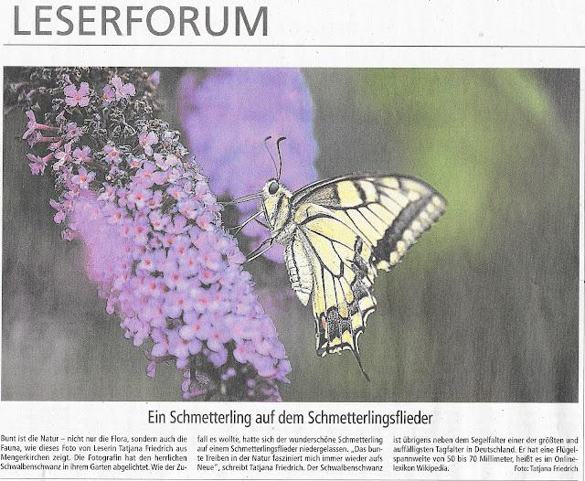 Weilburger Tageblatt-Leserbild-Tatjana Friedrich