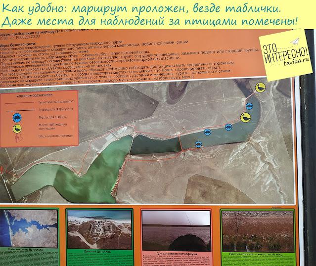 места для наблюдения за природой на Донузлаве