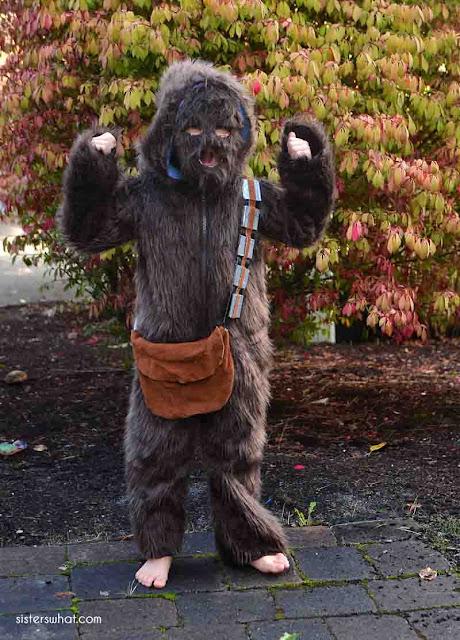 easy diy chewbacca costume