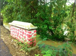 Winong Kidul Mulai Banjir (Desa Tawangrejo)