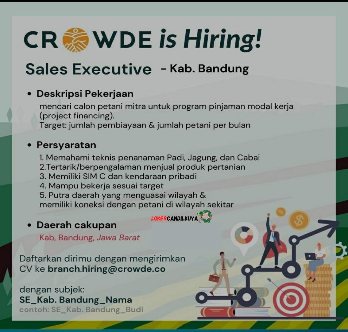 Lowongan Kerja Sales Executive Crowde Bandung