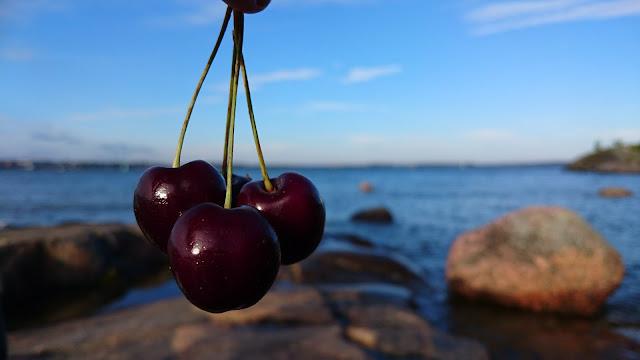 4 tummaa kirsikkaa, taustalla meri.