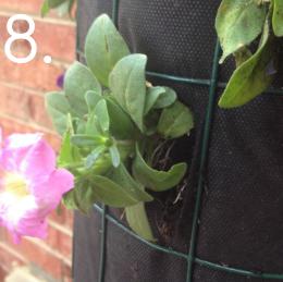 Inspirasi Menghemat Tempat Dengan Pot Bunga Inspirasi Menghemat Tempat Dengan Pot Bunga