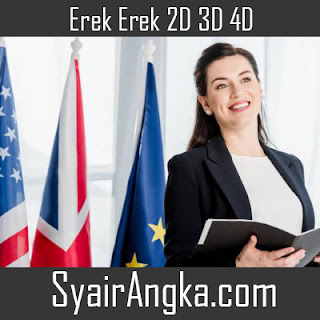 Erek Erek Menjadi Diplomat 2D 3D 4D