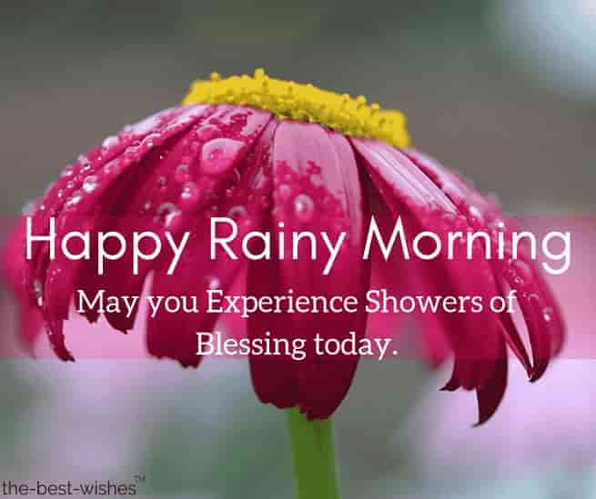 rainy gud morning images with flower