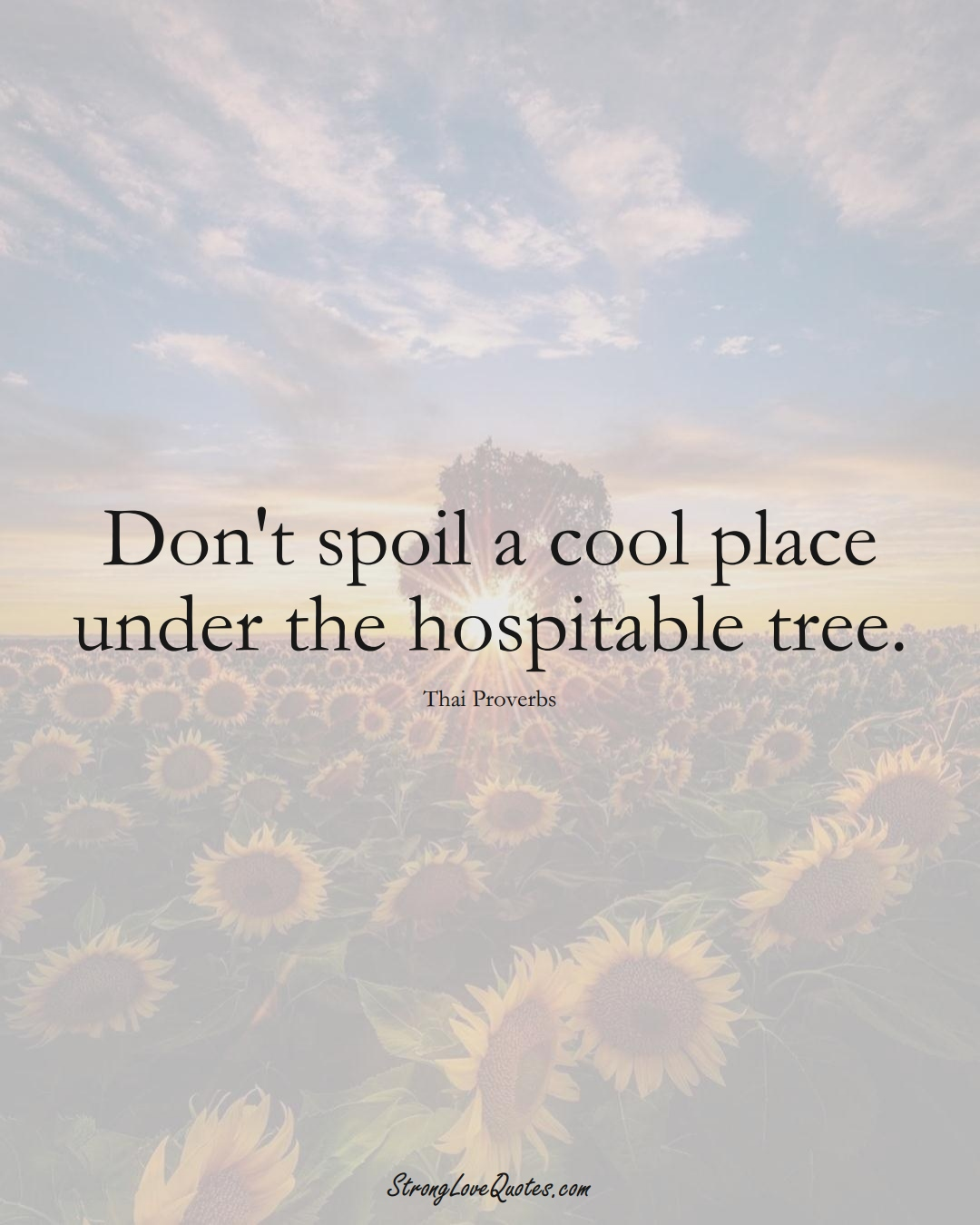 Don't spoil a cool place under the hospitable tree. (Thai Sayings);  #AsianSayings