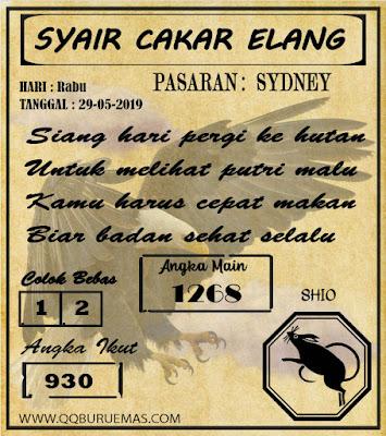 SYAIR SYDNEY 29-05-2019