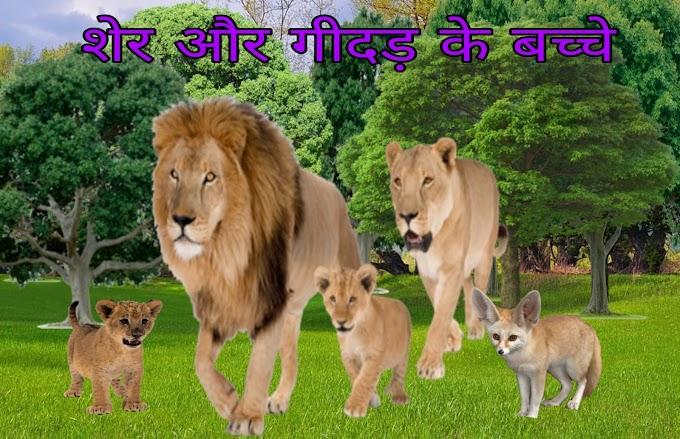 शेर और गीदड़ के बच्चे  की  पंचतन्त्र कहानी   Sher Aur Gidad ke bachche ki kahani -