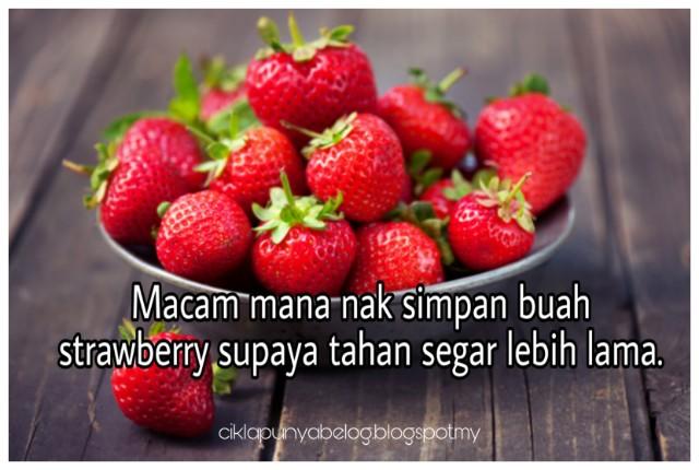 Macam mana nak simpan buah strawberry supaya tahan segar lebih lama.